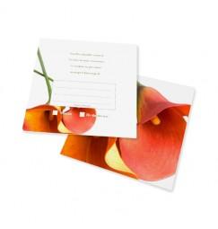 RSVP card arum
