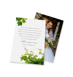 Classic thank you card the vine