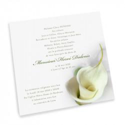 Calla lily condolences cards