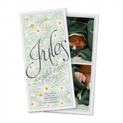 Birth announcement daisies