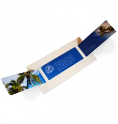 Wedding invitation palm tree